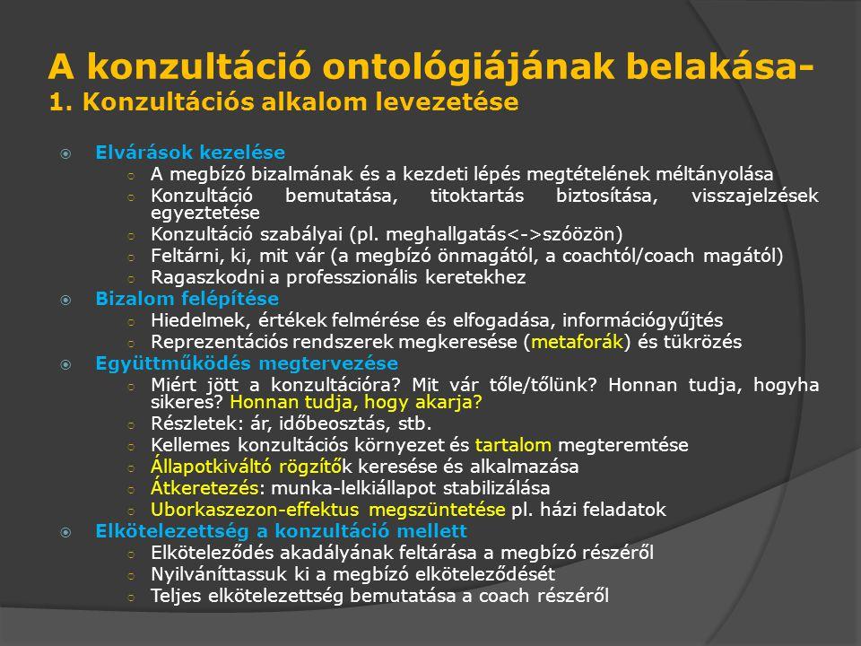 A konzultáció ontológiájának belakása- 1.