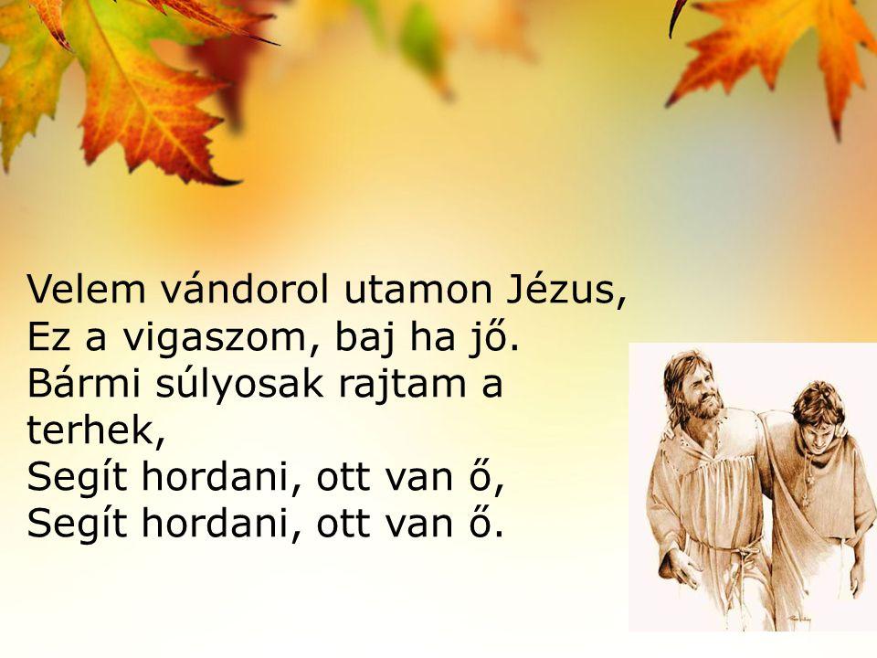 Velem vándorol utamon Jézus, Ez a vigaszom, baj ha jő.