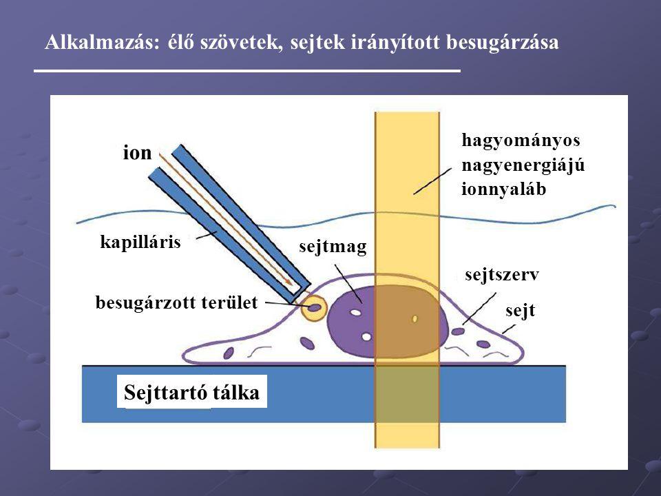 ion kapilláris sejtmag Sejttartó tálka kapilláris sejt sejtszerv hagyományos nagyenergiájú ionnyaláb besugárzott terület Alkalmazás: élő szövetek, sej