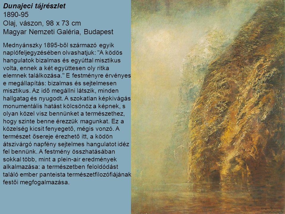 Dunajeci tájrészlet 1890-95 Olaj, vászon, 98 x 73 cm Magyar Nemzeti Galéria, Budapest Mednyánszky 1895-ből származó egyik naplófeljegyzésében olvashatjuk: A ködös hangulatok bizalmas és egyúttal misztikus volta, ennek a két együttesen oly ritka elemnek találkozása. E festményre érvényes e megállapítás: bizalmas és sejtelmesen misztikus.