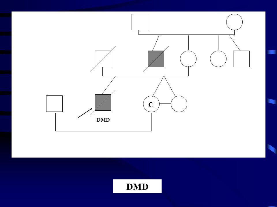 C DMD
