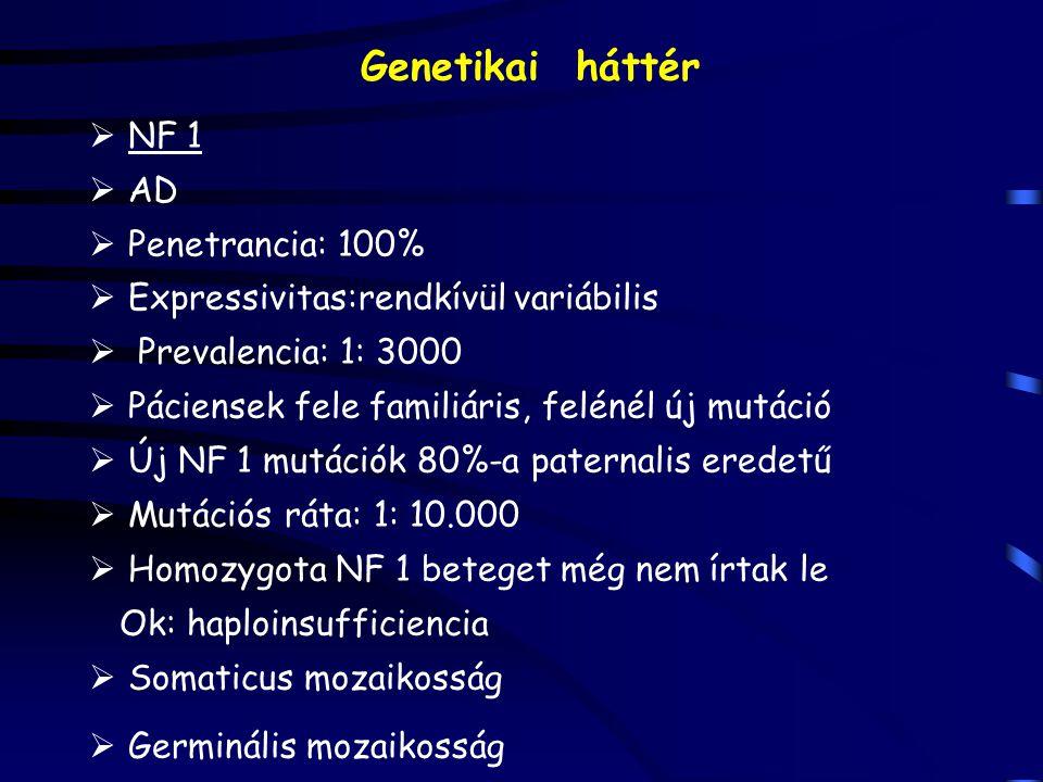 Genetikai háttér  NF 1  AD  Penetrancia: 100%  Expressivitas:rendkívül variábilis  Prevalencia: 1: 3000  Páciensek fele familiáris, felénél új mutáció  Új NF 1 mutációk 80%-a paternalis eredetű  Mutációs ráta: 1: 10.000  Homozygota NF 1 beteget még nem írtak le Ok: haploinsufficiencia  Somaticus mozaikosság  Germinális mozaikosság