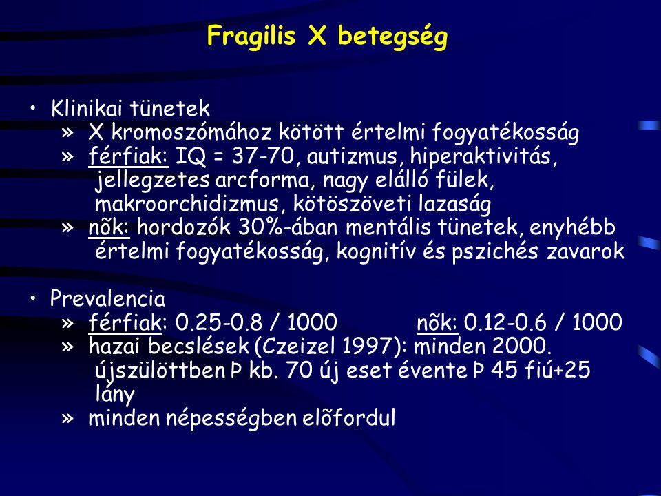 Fragilis X betegség Klinikai tünetek » X kromoszómához kötött értelmi fogyatékosság » férfiak: IQ = 37-70, autizmus, hiperaktivitás, jellegzetes arcfo