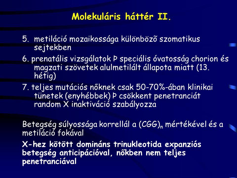 Molekuláris háttér II.5.metiláció mozaikossága különbözõ szomatikus sejtekben 6.