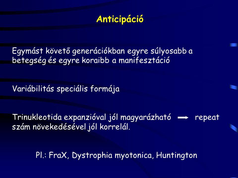 Anticipáció Egymást követő generációkban egyre súlyosabb a betegség és egyre koraibb a manifesztáció Variábilitás speciális formája Trinukleotida expa
