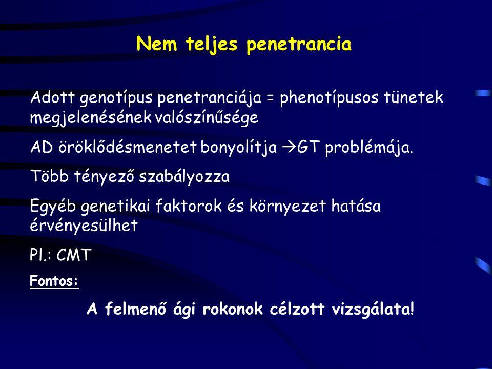 Nem teljes penetrancia Adott genotípus penetranciája = phenotípusos tünetek megjelenésének valószínűsége AD öröklődésmenetet bonyolítja  GT problémáj