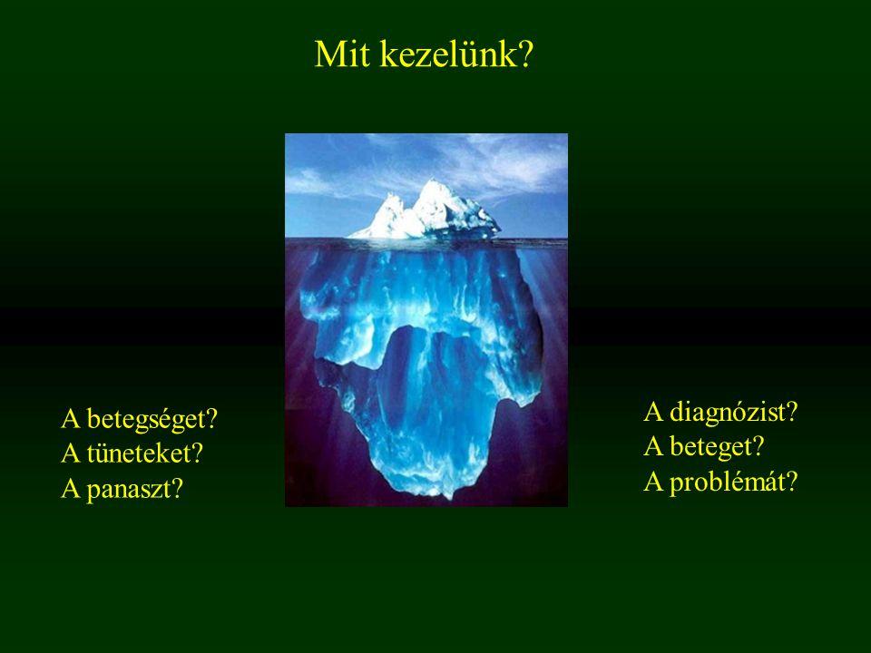 Mit kezelünk? A betegséget? A tüneteket? A panaszt? A diagnózist? A beteget? A problémát?
