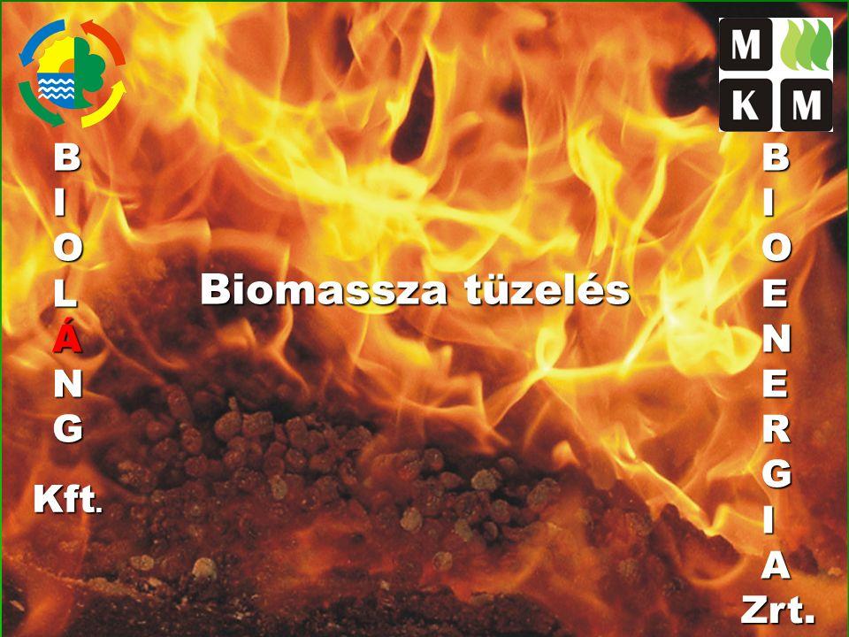 Mezőgazdasági energianövény (energiafű) pellet Energiafű pellet fűtőértéke 17 MJ / kg (6% nedvességtartalom mellett) Energiafű pellet fajsúly 700 kg / m³ Energiafű pellet / földgáz egyenérték 2 kg = 1 m³