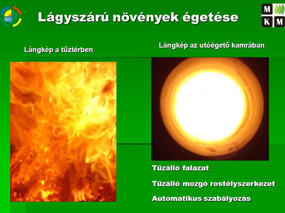 Lángkép az utóégető kamrában Lángkép a tűztérben Tűzálló falazat Tűzálló mozgó rostélyszerkezet Automatikus szabályozás Lágyszárú növények égetése