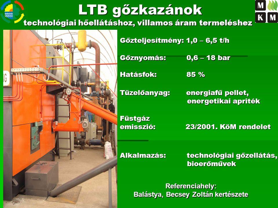 Referenciahely: Balástya, Becsey Zoltán kertészete LTB gőzkazánok technológiai hőellátáshoz, villamos áram termeléshez Gőzteljesítmény: 1,0 – 6,5 t/h