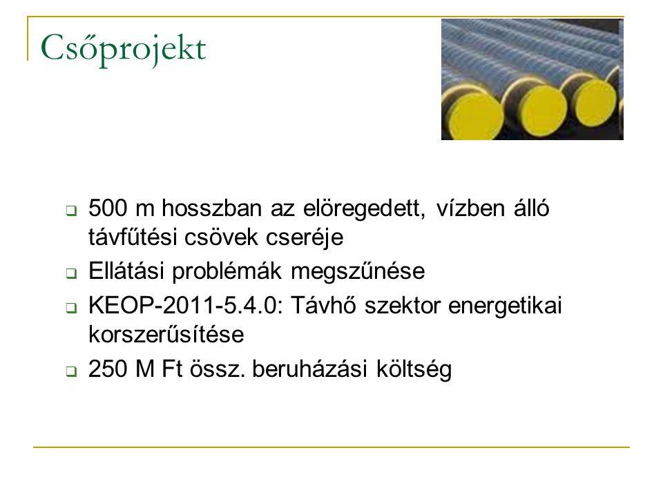 Csőprojekt  500 m hosszban az elöregedett, vízben álló távfűtési csövek cseréje  Ellátási problémák megszűnése  KEOP-2011-5.4.0: Távhő szektor ener