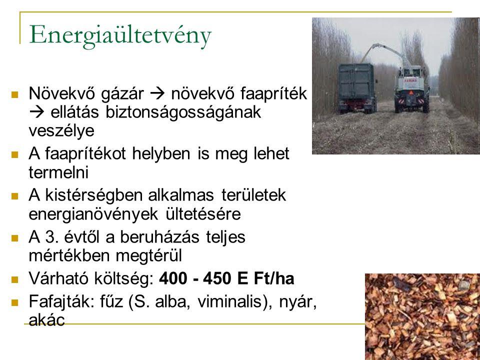 Energiaültetvény Növekvő gázár  növekvő faapríték ár  ellátás biztonságosságának veszélye A faaprítékot helyben is meg lehet termelni A kistérségben