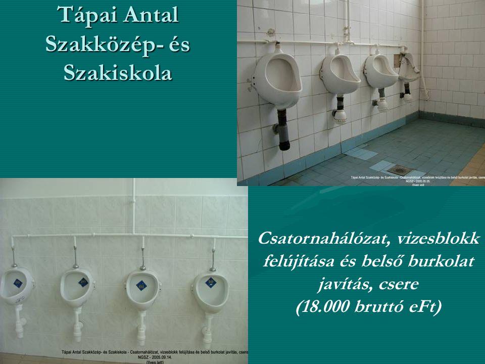 Tápai Antal Szakközép- és Szakiskola Csatornahálózat, vizesblokk felújítása és belső burkolat javítás, csere (18.000 bruttó eFt)
