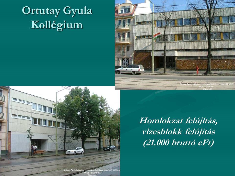 Ortutay Gyula Kollégium Homlokzat felújítás, vizesblokk felújítás (21.000 bruttó eFt)