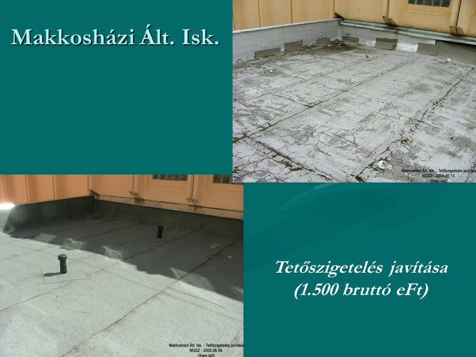 Makkosházi Ált. Isk. Tetőszigetelés javítása (1.500 bruttó eFt)