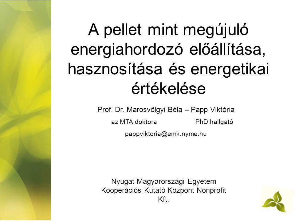 A pellet mint megújuló energiahordozó előállítása, hasznosítása és energetikai értékelése Nyugat-Magyarországi Egyetem Kooperációs Kutató Központ Nonprofit Kft.