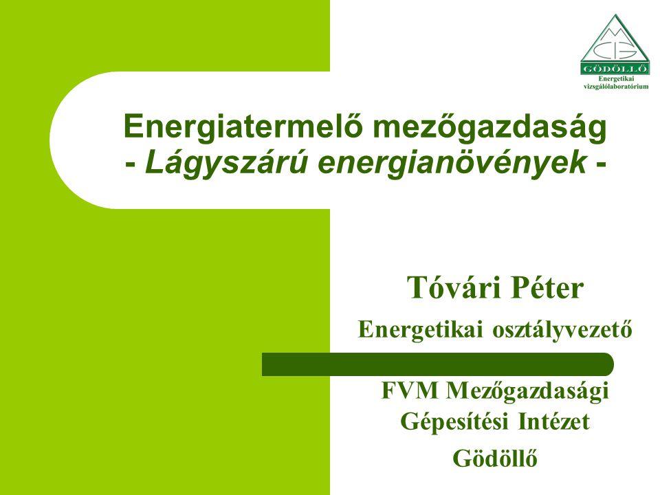 Energiatermelő mezőgazdaság - Lágyszárú energianövények - Tóvári Péter Energetikai osztályvezető FVM Mezőgazdasági Gépesítési Intézet Gödöllő Egy előadás könnyen vitára ösztönözheti a hallgatóságot.