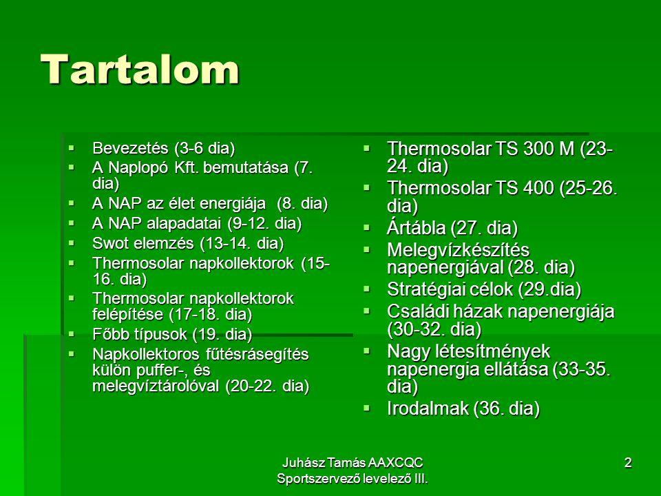 Juhász Tamás AAXCQC Sportszervező levelező III.2 Tartalom  Bevezetés (3-6 dia)  A Naplopó Kft.