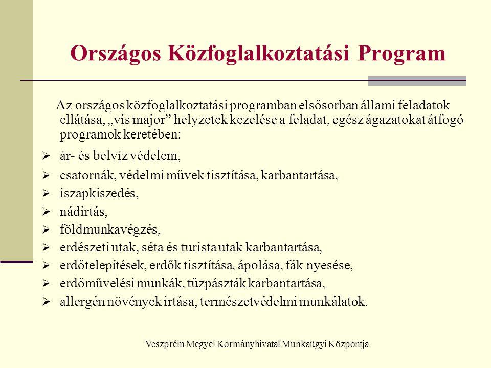 Veszprém Megyei Kormányhivatal Munkaügyi Központja Országos Közfoglalkoztatási Program Az országos közfoglalkoztatási programban elsősorban állami fel