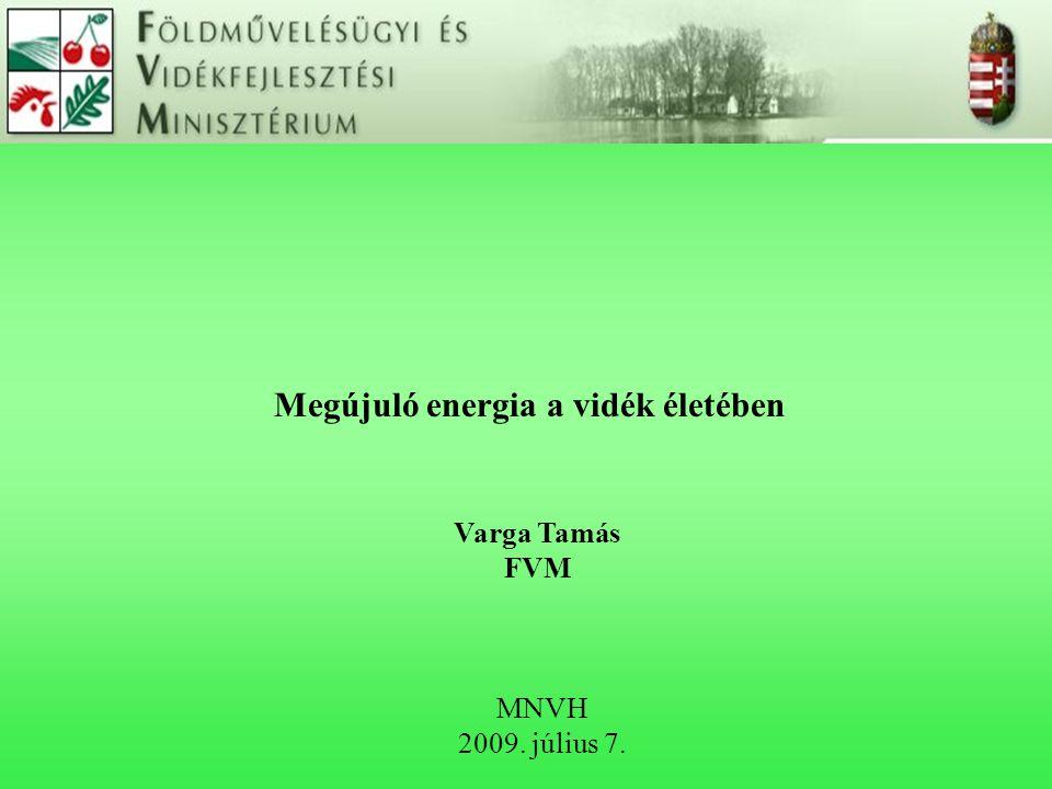 Megújuló energia a vidék életében MNVH 2009. július 7. Varga Tamás FVM
