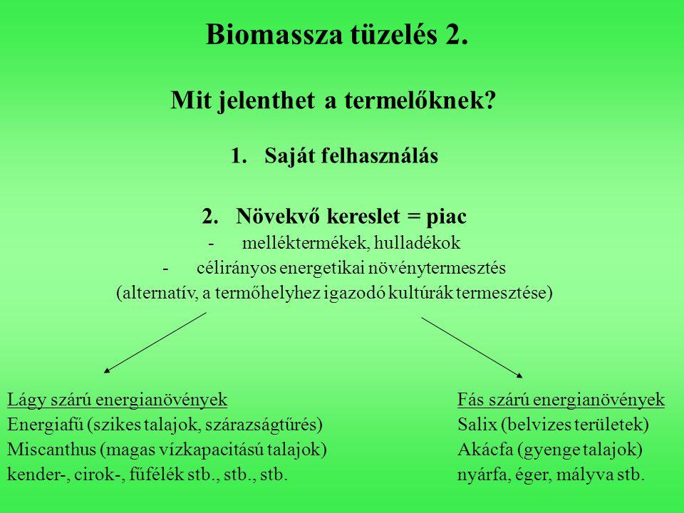Biomassza tüzelés 2. Mit jelenthet a termelőknek? 1.Saját felhasználás 2.Növekvő kereslet = piac -melléktermékek, hulladékok -célirányos energetikai n