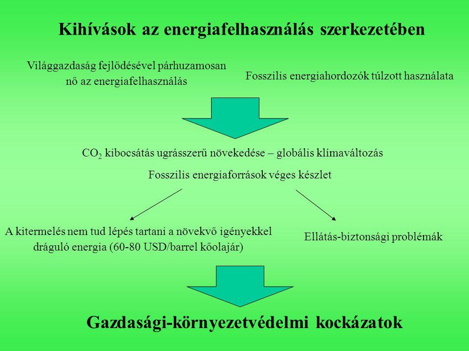 Kihívások az energiafelhasználás szerkezetében Fosszilis energiahordozók túlzott használata Világgazdaság fejlődésével párhuzamosan nő az energiafelhasználás CO 2 kibocsátás ugrásszerű növekedése – globális klímaváltozás Fosszilis energiaforrások véges készlet A kitermelés nem tud lépés tartani a növekvő igényekkel dráguló energia (60-80 USD/barrel kőolajár) Ellátás-biztonsági problémák Gazdasági-környezetvédelmi kockázatok