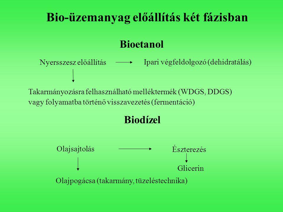 Bio-üzemanyag előállítás két fázisban Nyersszesz előállítás Ipari végfeldolgozó (dehidratálás) Takarmányozásra felhasználható melléktermék (WDGS, DDGS