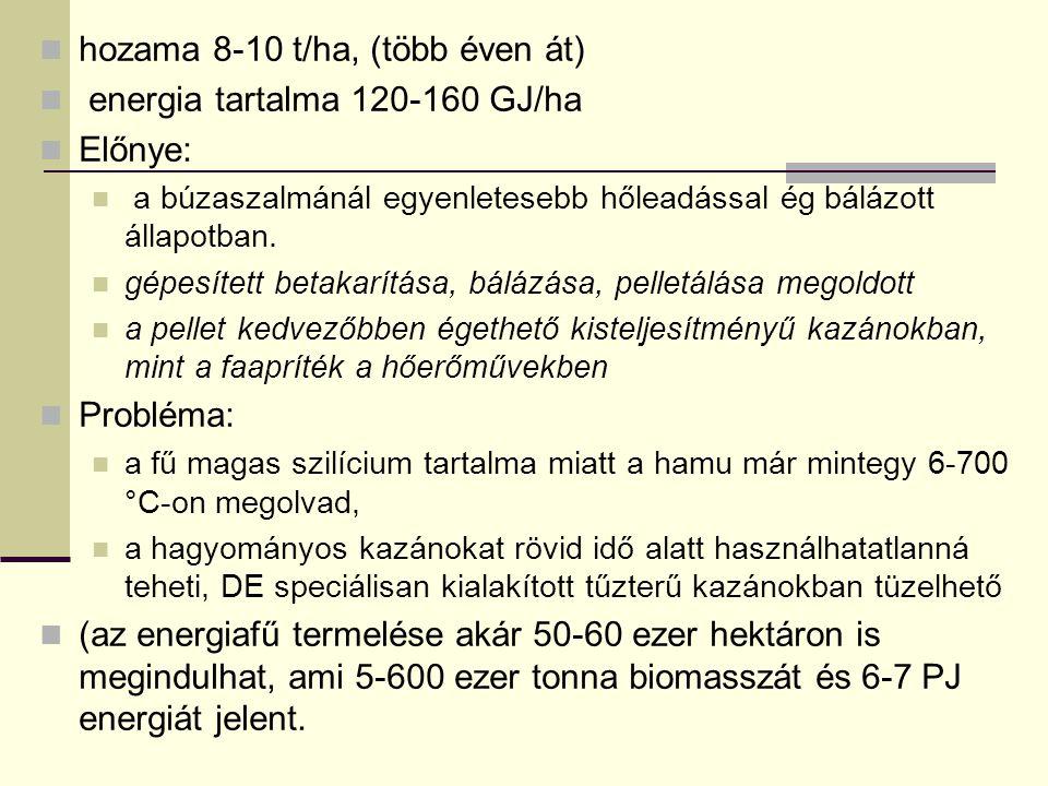 hozama 8-10 t/ha, (több éven át) energia tartalma 120-160 GJ/ha Előnye: a búzaszalmánál egyenletesebb hőleadással ég bálázott állapotban.