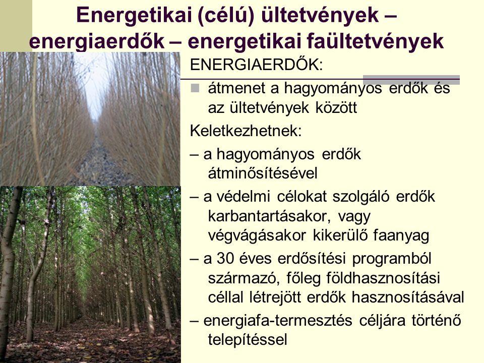 Energetikai (célú) ültetvények – energiaerdők – energetikai faültetvények ENERGIAERDŐK: átmenet a hagyományos erdők és az ültetvények között Keletkezhetnek: – a hagyományos erdők átminősítésével – a védelmi célokat szolgáló erdők karbantartásakor, vagy végvágásakor kikerülő faanyag – a 30 éves erdősítési programból származó, főleg földhasznosítási céllal létrejött erdők hasznosításával – energiafa-termesztés céljára történő telepítéssel