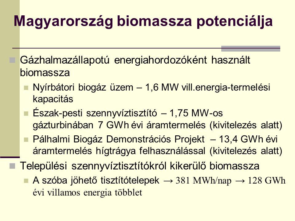 Magyarország biomassza potenciálja Gázhalmazállapotú energiahordozóként használt biomassza Nyírbátori biogáz üzem – 1,6 MW vill.energia-termelési kapacitás Észak-pesti szennyvíztisztító – 1,75 MW-os gázturbinában 7 GWh évi áramtermelés (kivitelezés alatt) Pálhalmi Biogáz Demonstrációs Projekt – 13,4 GWh évi áramtermelés hígtrágya felhasználással (kivitelezés alatt) Települési szennyvíztisztítókról kikerülő biomassza A szóba jöhető tisztítótelepek → 381 MWh/nap → 128 GWh évi villamos energia többlet