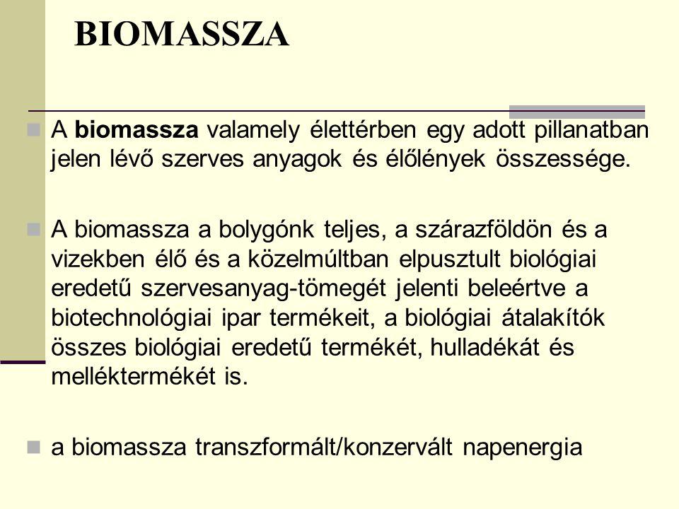 BIOMASSZA A biomassza valamely élettérben egy adott pillanatban jelen lévő szerves anyagok és élőlények összessége. A biomassza a bolygónk teljes, a s