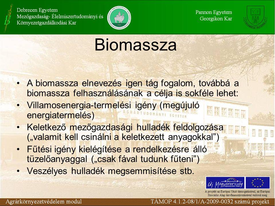 A biomassza elnevezés igen tág fogalom, továbbá a biomassza felhasználásának a célja is sokféle lehet: Villamosenergia-termelési igény (megújuló energ