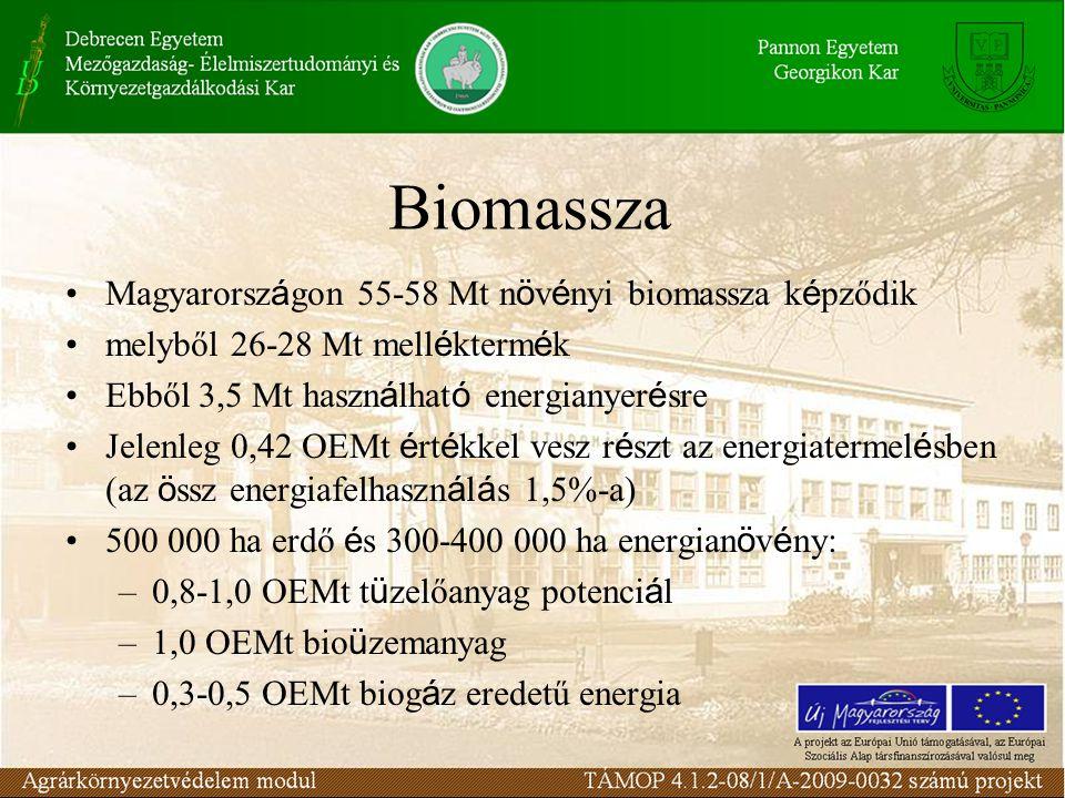 Biomassza Magyarorsz á gon 55-58 Mt n ö v é nyi biomassza k é pződik melyből 26-28 Mt mell é kterm é k Ebből 3,5 Mt haszn á lhat ó energianyer é sre J