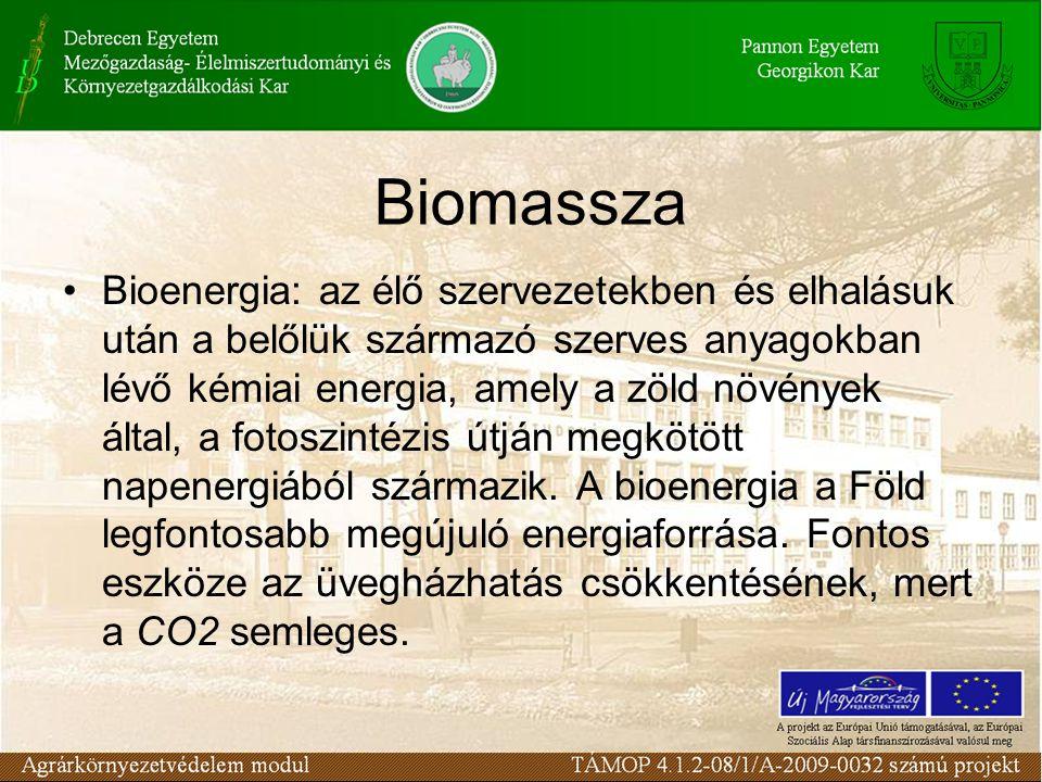 Biomassza Bioenergia: az élő szervezetekben és elhalásuk után a belőlük származó szerves anyagokban lévő kémiai energia, amely a zöld növények által,