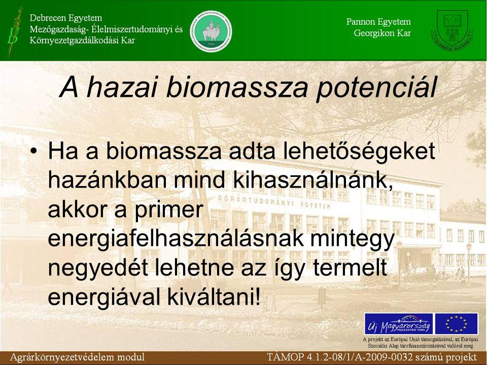 Ha a biomassza adta lehetőségeket hazánkban mind kihasználnánk, akkor a primer energiafelhasználásnak mintegy negyedét lehetne az így termelt energiáv