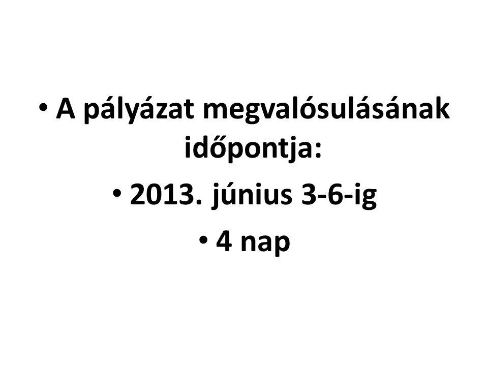 A pályázat megvalósulásának időpontja: 2013. június 3-6-ig 4 nap