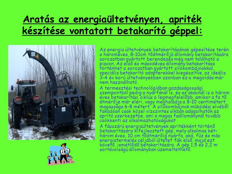 """Energia ültetvény létesítése: avagy hogyan lehetséges pl hogy""""szenyvízzel"""" fűtsünk : Az energia fűz termesztésének biológiai tulajdonságai és legfőbb"""