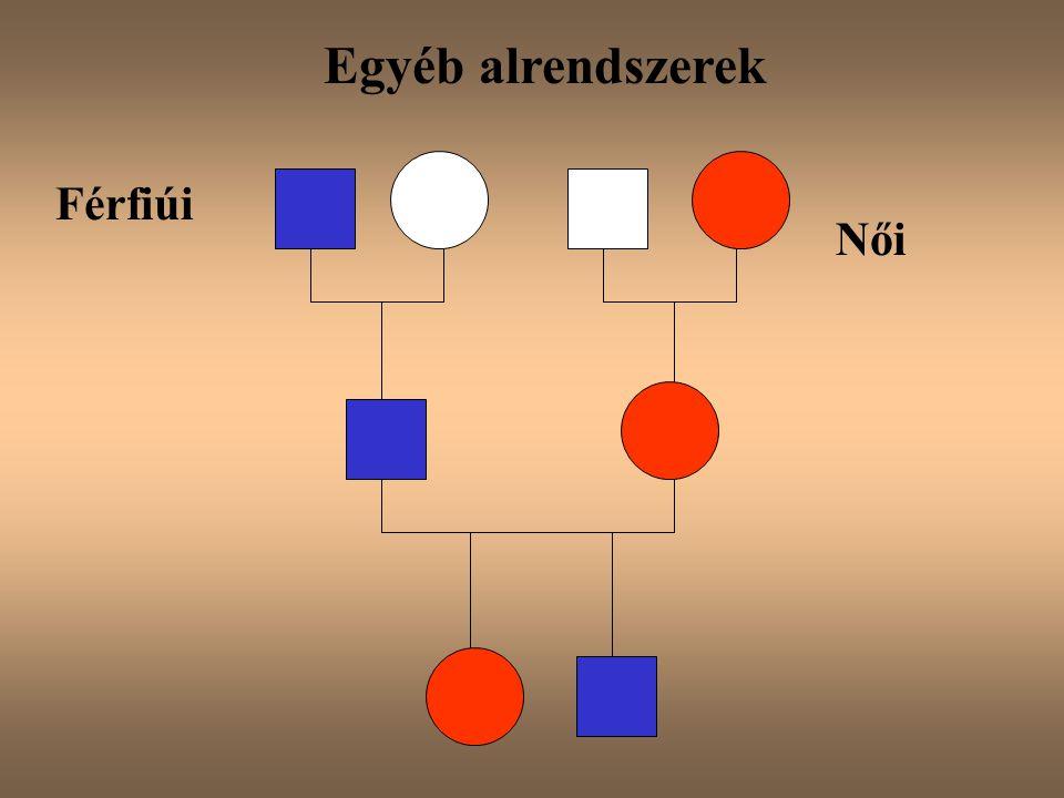 Férfiúi Egyéb alrendszerek Női