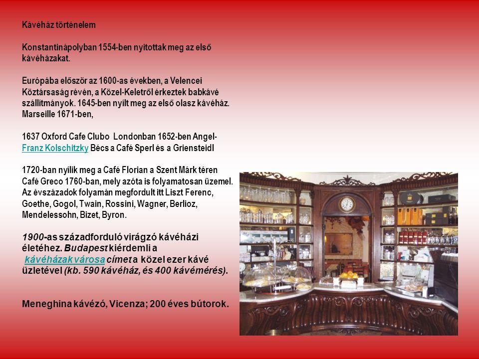 Kávéház történelem Konstantinápolyban 1554-ben nyitottak meg az első kávéházakat. Európába először az 1600-as években, a Velencei Köztársaság révén, a