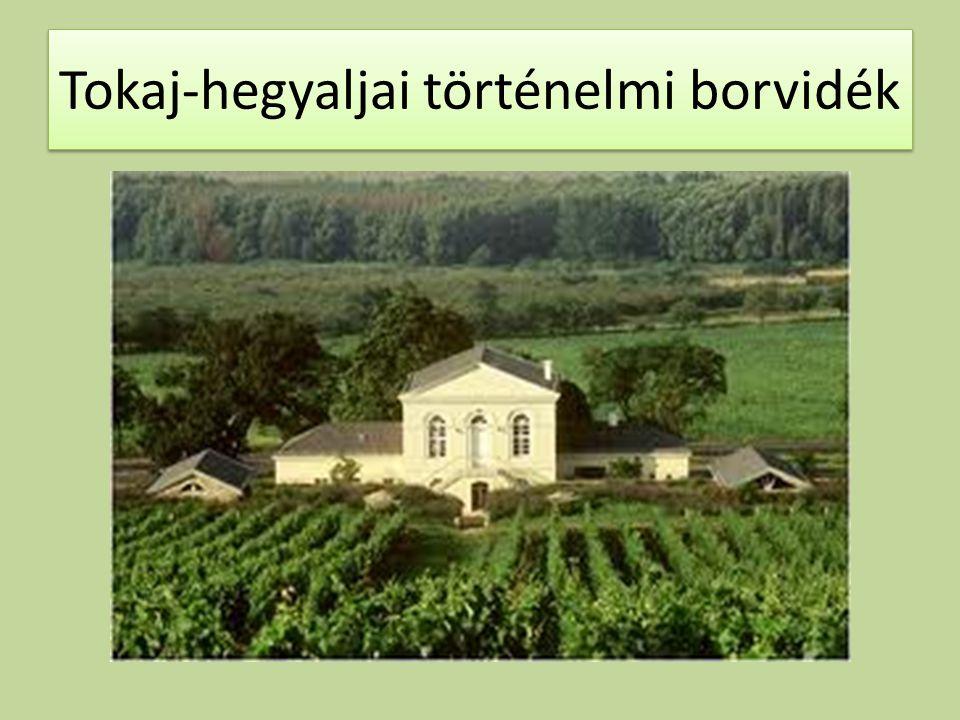 Tokaj-hegyaljai történelmi borvidék