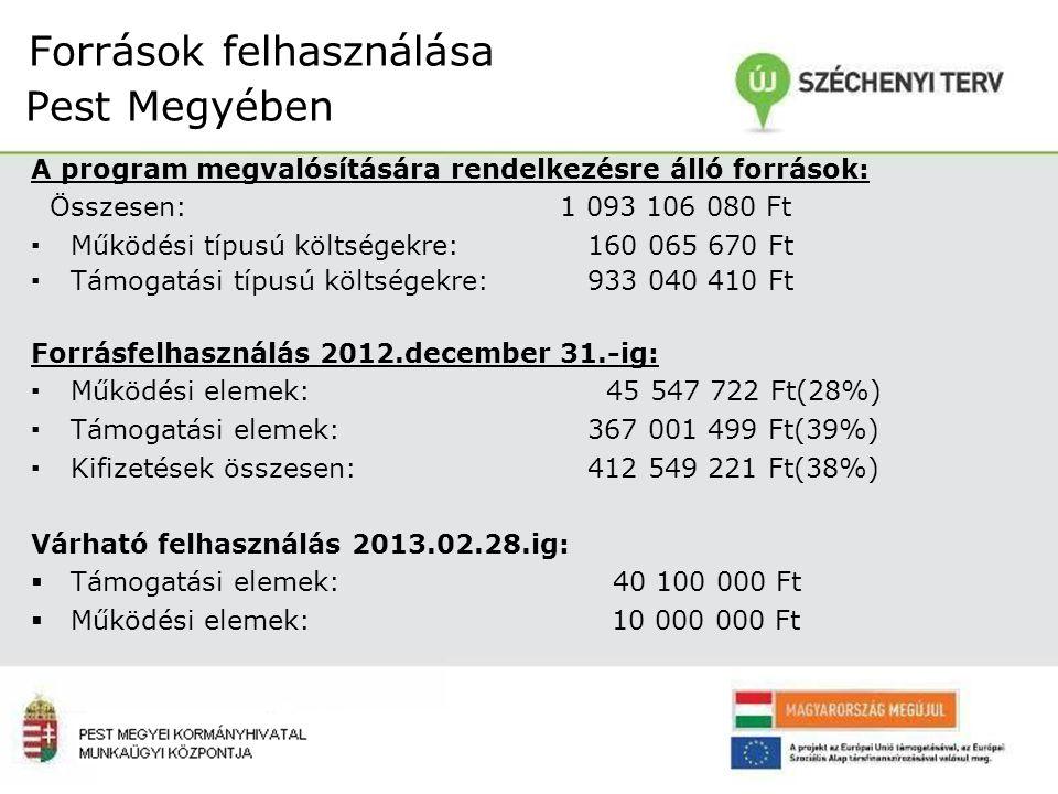 Források felhasználása Pest Megyében A program megvalósítására rendelkezésre álló források: Összesen: 1 093 106 080 Ft ▪Működési típusú költségekre: 160 065 670 Ft ▪Támogatási típusú költségekre: 933 040 410 Ft Forrásfelhasználás 2012.december 31.-ig: ▪Működési elemek: 45 547 722 Ft(28%) ▪Támogatási elemek: 367 001 499 Ft(39%) ▪Kifizetések összesen: 412 549 221 Ft(38%) Várható felhasználás 2013.02.28.ig:  Támogatási elemek: 40 100 000 Ft  Működési elemek: 10 000 000 Ft