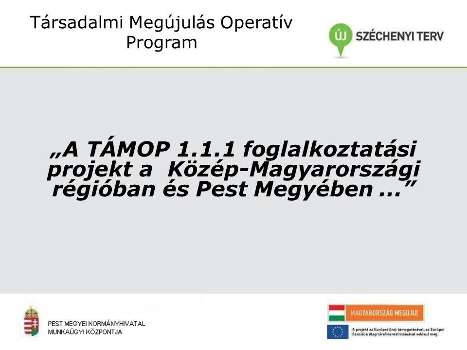 """""""A TÁMOP 1.1.1 foglalkoztatási projekt a Közép-Magyarországi régióban és Pest Megyében... Társadalmi Megújulás Operatív Program"""