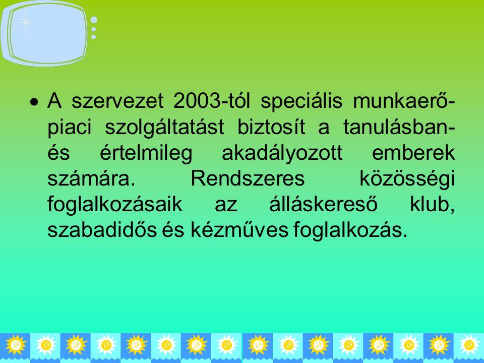  A szervezet 2003-tól speciális munkaerő- piaci szolgáltatást biztosít a tanulásban- és értelmileg akadályozott emberek számára. Rendszeres közösségi