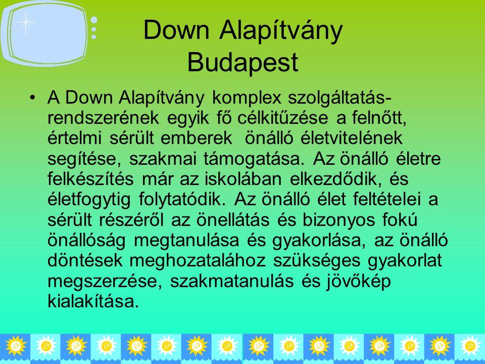 Down Alapítvány Budapest A Down Alapítvány komplex szolgáltatás- rendszerének egyik fő célkitűzése a felnőtt, értelmi sérült emberek önálló életvitelének segítése, szakmai támogatása.