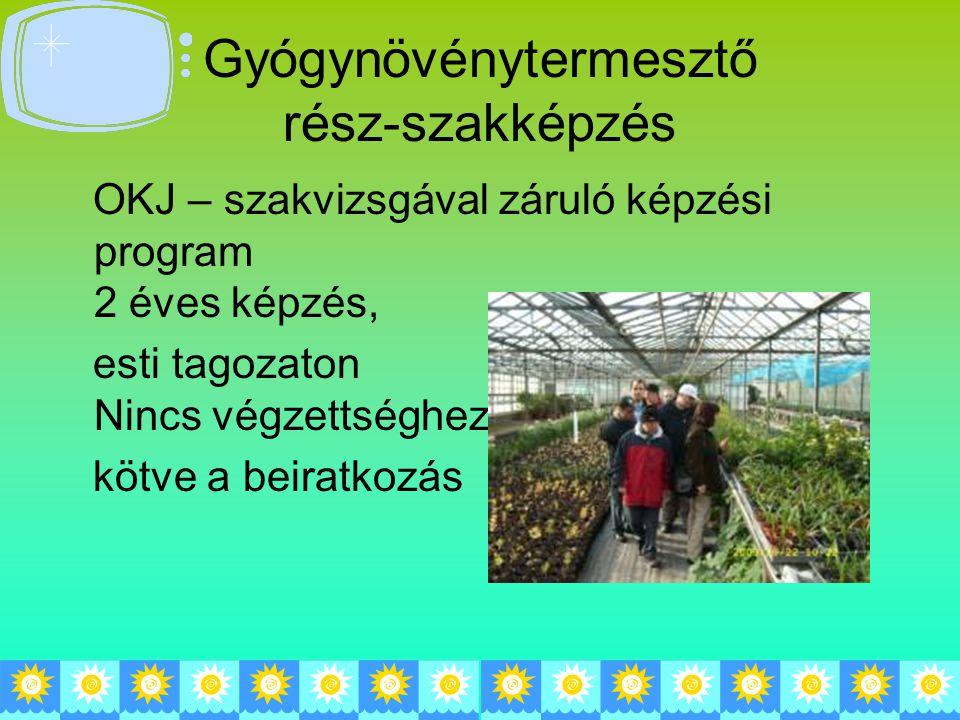 Gyógynövénytermesztő rész-szakképzés OKJ – szakvizsgával záruló képzési program 2 éves képzés, esti tagozaton Nincs végzettséghez kötve a beiratkozás