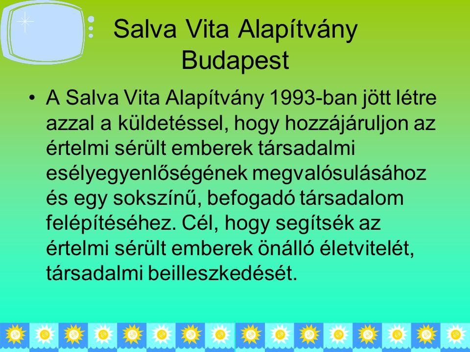 Salva Vita Alapítvány Budapest A Salva Vita Alapítvány 1993-ban jött létre azzal a küldetéssel, hogy hozzájáruljon az értelmi sérült emberek társadalmi esélyegyenlőségének megvalósulásához és egy sokszínű, befogadó társadalom felépítéséhez.