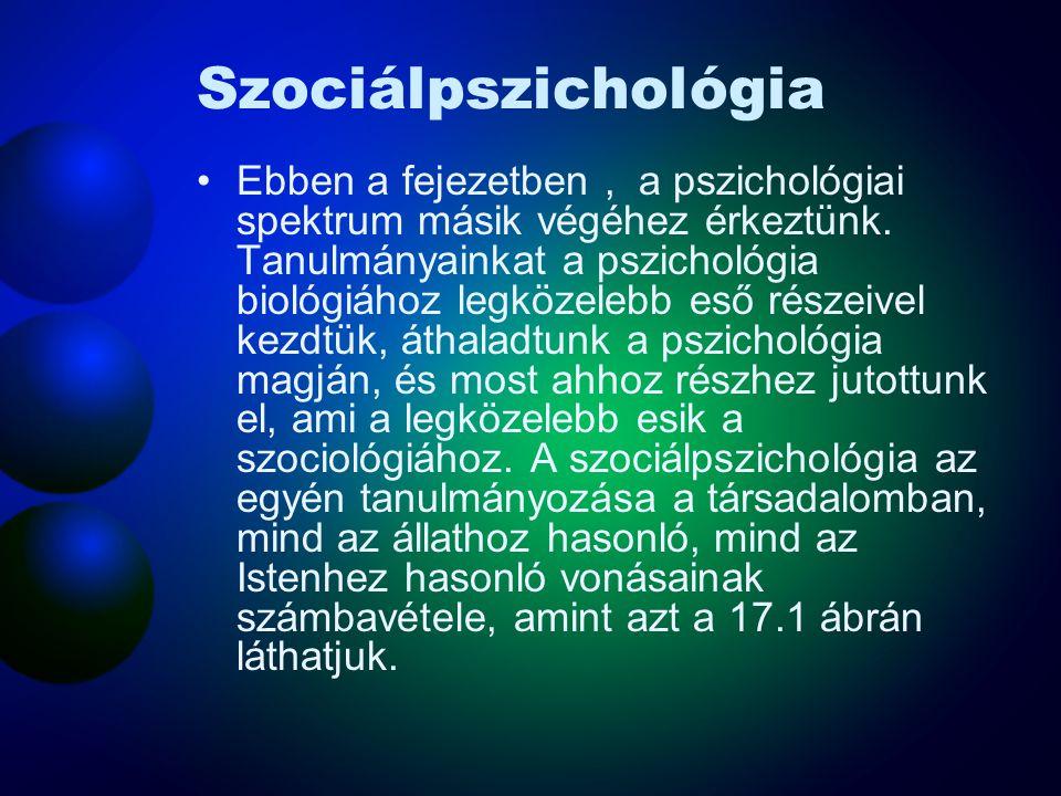 Szociálpszichológia Ebben a fejezetben, a pszichológiai spektrum másik végéhez érkeztünk. Tanulmányainkat a pszichológia biológiához legközelebb eső r