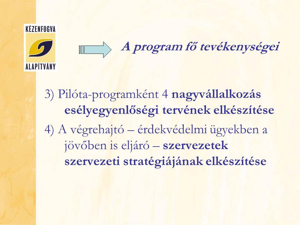 A program fő tevékenységei 3) Pilóta-programként 4 nagyvállalkozás esélyegyenlőségi tervének elkészítése 4) A végrehajtó – érdekvédelmi ügyekben a jövőben is eljáró – szervezetek szervezeti stratégiájának elkészítése