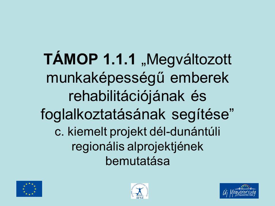 """TÁMOP 1.1.1 """"Megváltozott munkaképességű emberek rehabilitációjának és foglalkoztatásának segítése c."""