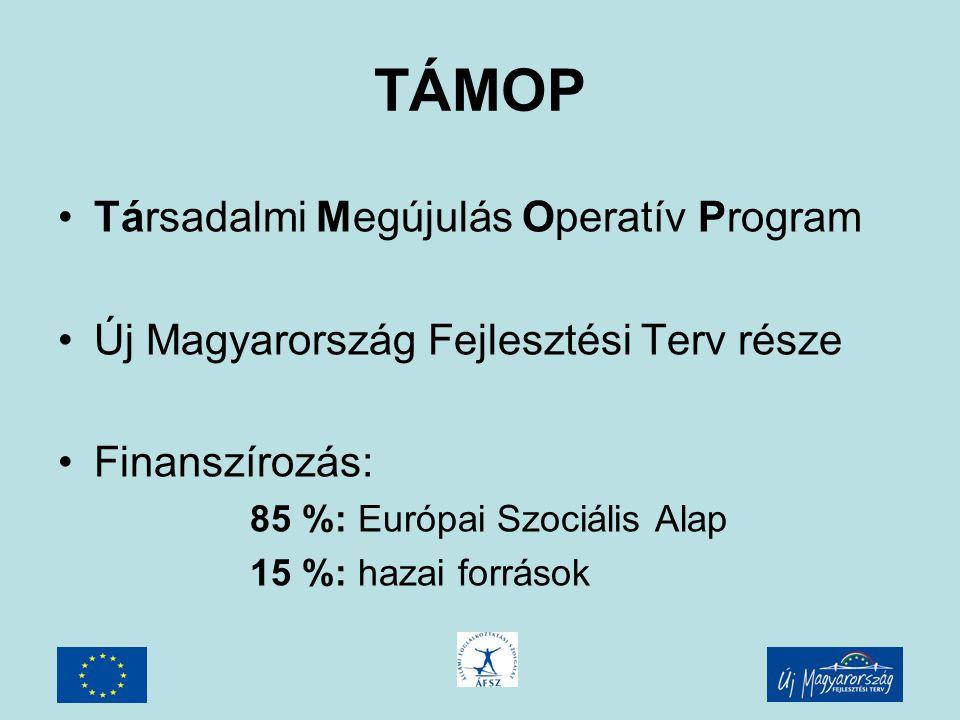 TÁMOP 1.1.1 Főkedvezményezett: Szociális és Munkaügyi Minisztérium Kedvezményezettek: Regionális Munkaügyi Központok Központi program => regionális alprojektek